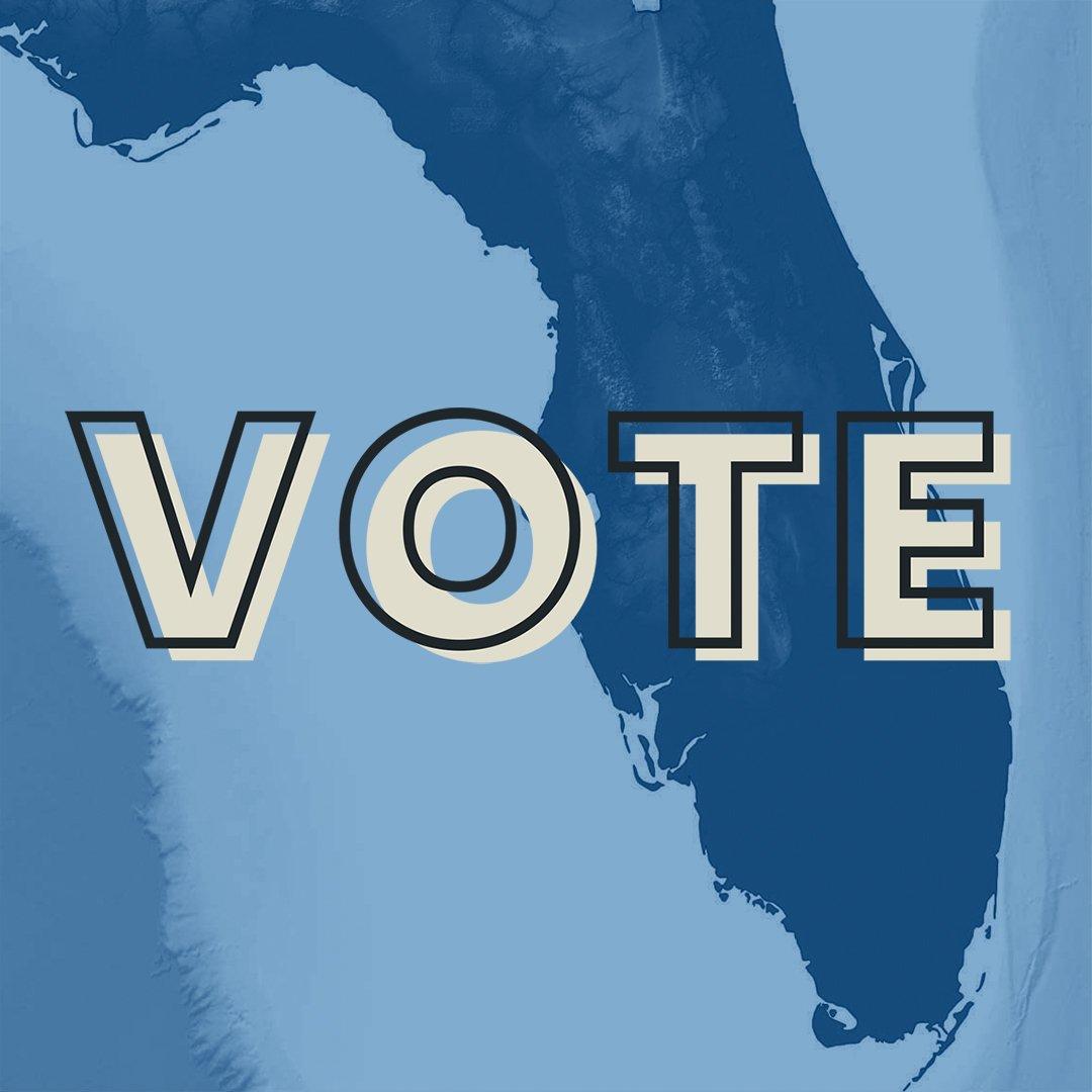 FL-vote