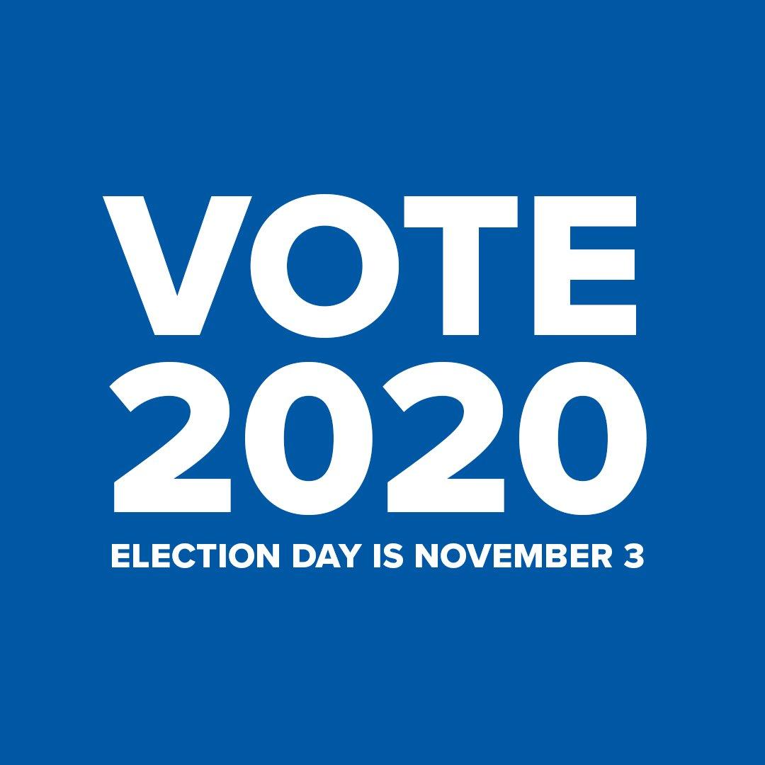 vote2020_1080